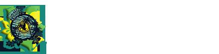 Виндсерфинг на Тенерифе